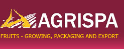 AGRISPA Ltd. is dealing with manufacturing, sorting, packing and export of fruit for fresh consumption.